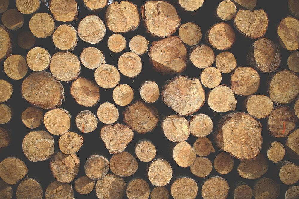 Timber-Featured